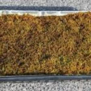 ハイゴケ トレー 6枚 (約1平米)セット